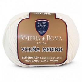 Valeria di Roma Vicuña Merino