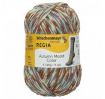 Regia Autumn Mood Color - 4 ply