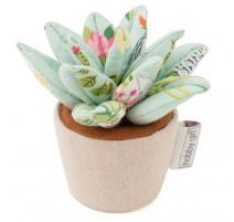 Pin cushion - Plant Life
