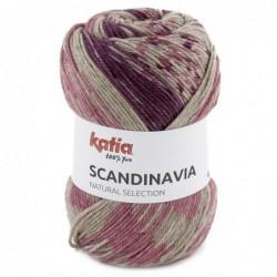 Katia Scandinavia