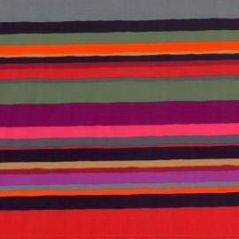 Rayas Horizontales Multicolor