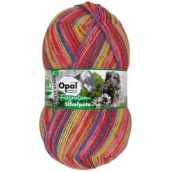 Opal Faszination Schafpate...